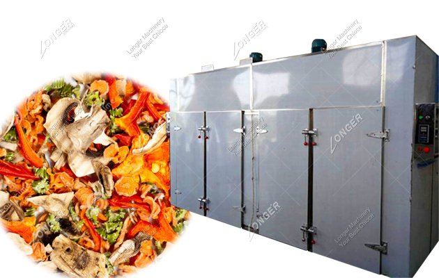 Commercial Fruit And Vegetable Dehydration Dryer Machine Manufacturers